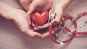 Cardiline - pomada - farmacia - preço